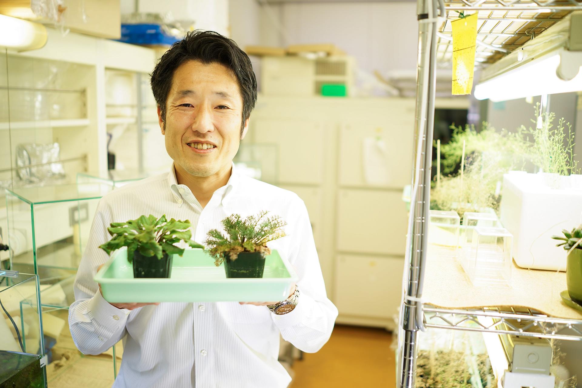 葉っぱの形から植物と環境の関係を探る