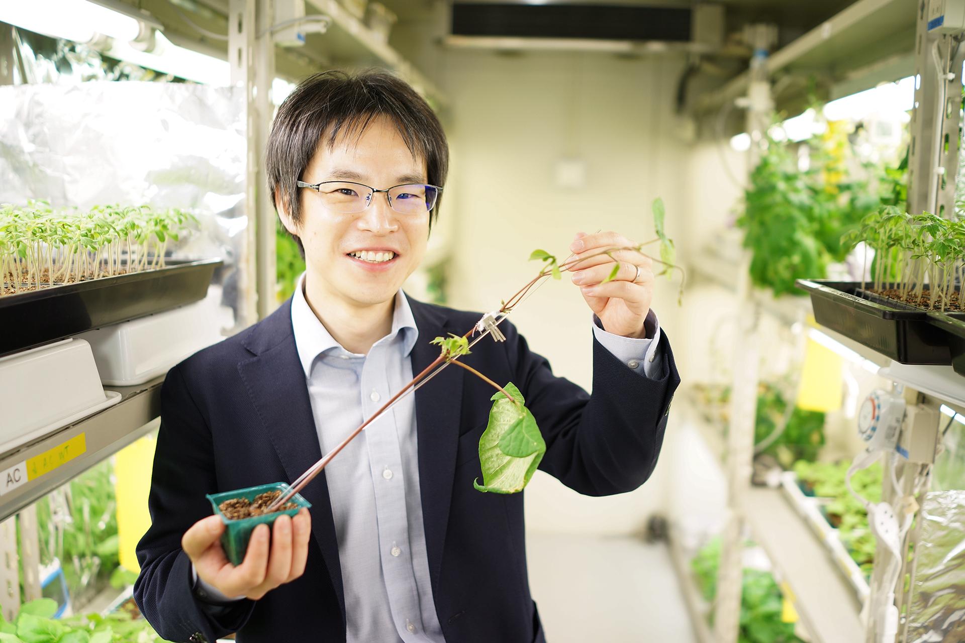 「接ぎ木」で広がる植物の魅力